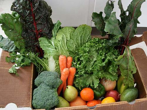 cartone verdura