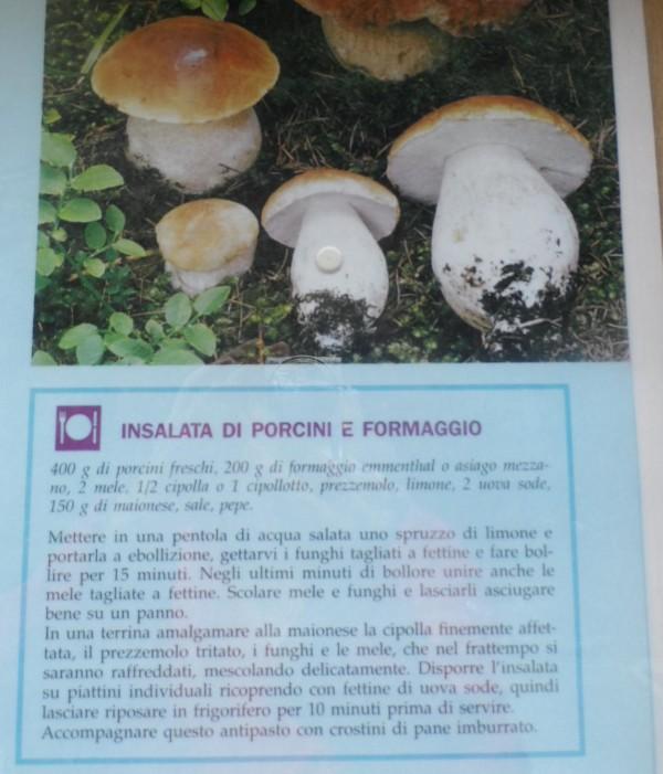 insalata di funghi porcini e formaggio ott14