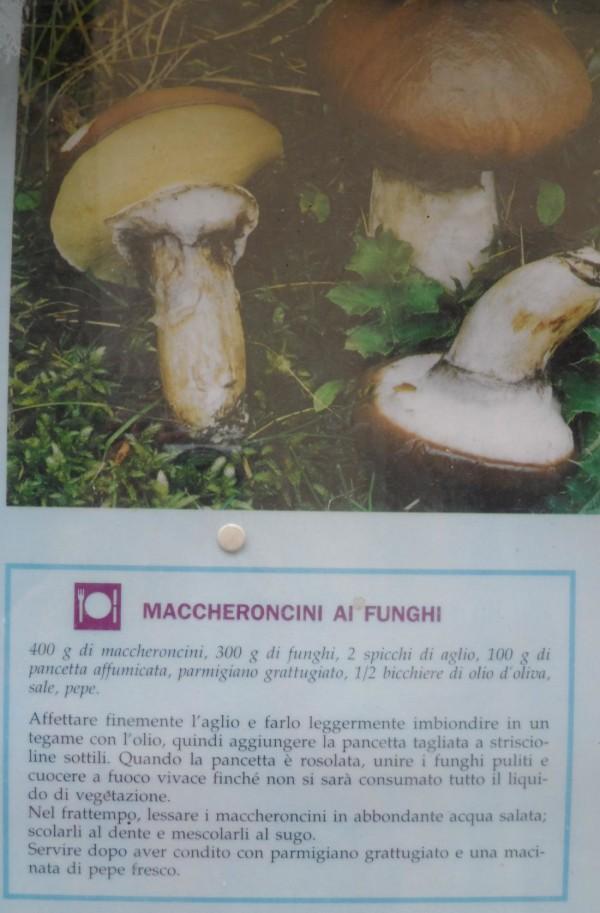 maccheroncini ai funghi